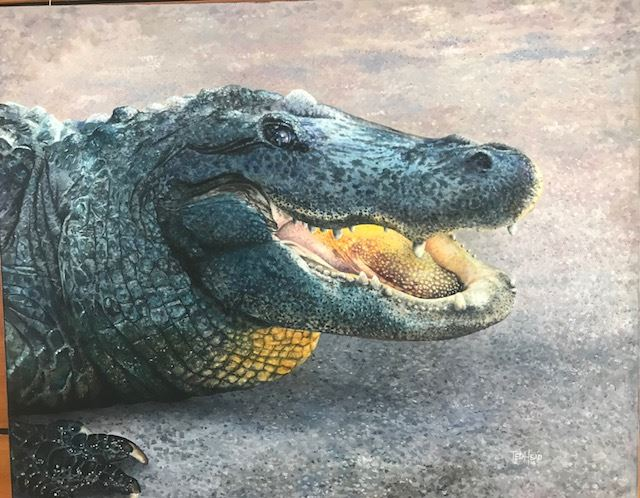 Artist painted Alligator Head